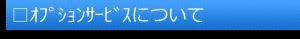 □オプションサービスについて(題)