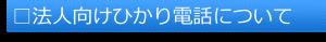 □法人向けひかり電話について(題)